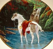 Blackfoot War Pony Collectible Plate in Clarksville, Tennessee